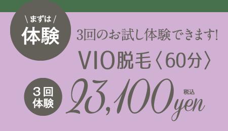 まずは体験!3回のお試し体験ができます!VIO脱毛<60分>3回体験23,100円!